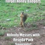 Fun a Day Reseda – Day 26: Make This a Meme!