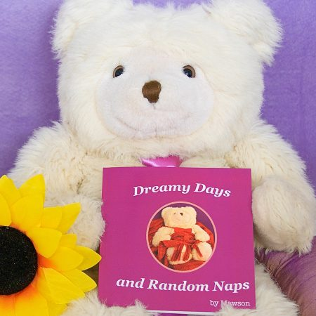 Mawson Bear in Dreamy Days and Random Naps