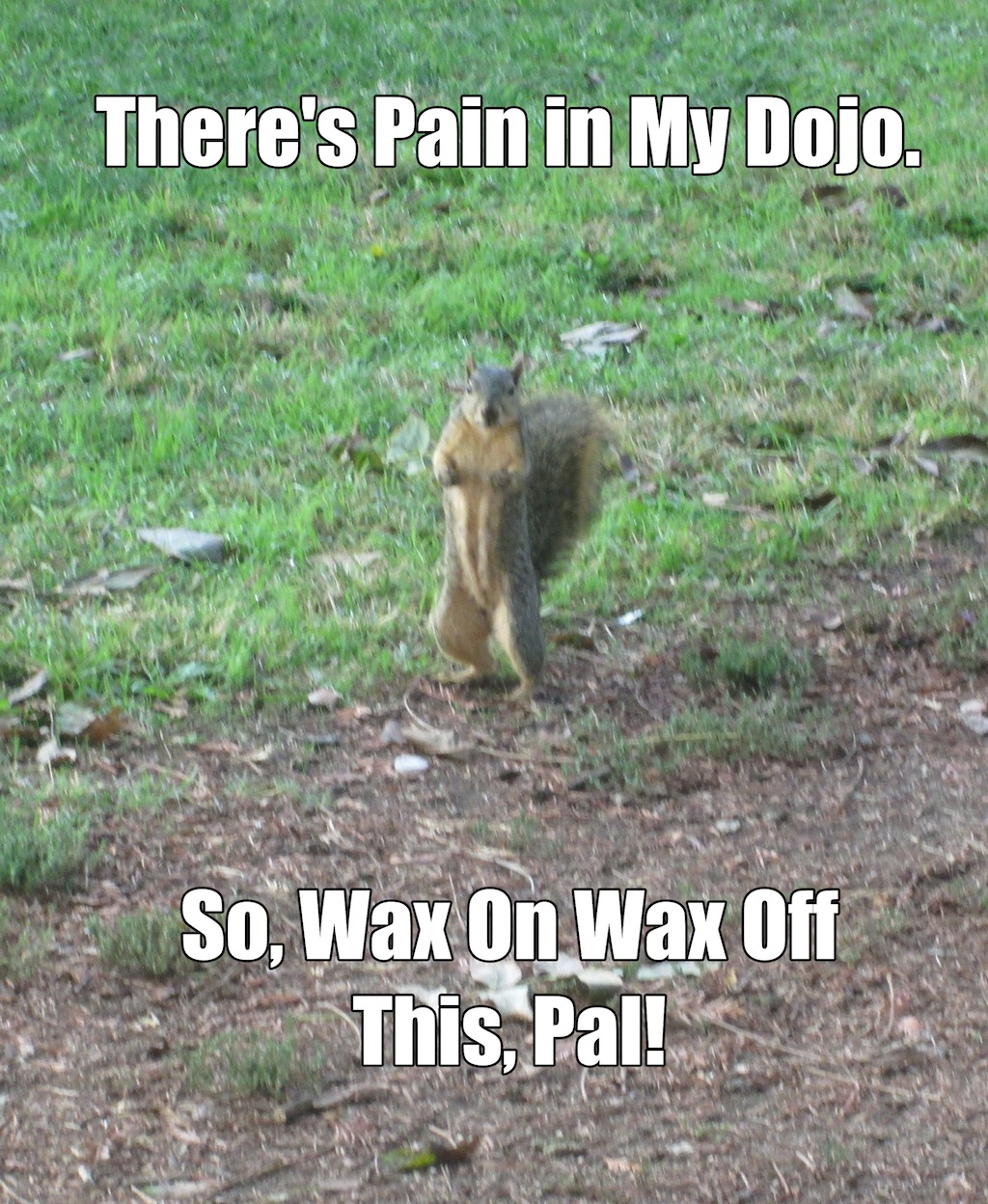 There's pain in my dojo. So, wax on wax off this, pal!