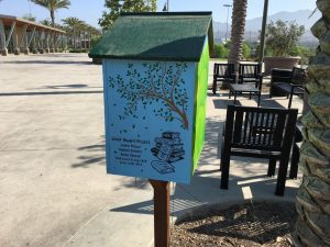 Girl Scouts who built this Little Free Library as a Silver Award project.