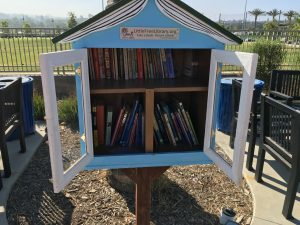 The books in the Little Free Library.